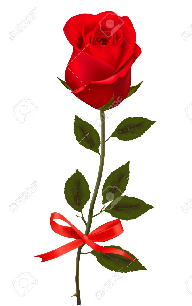 Beautiful single red rose clipart.