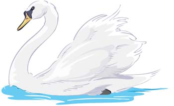 Swan babies clipart #18