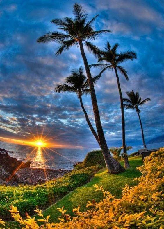 Beautiful, Photographs and Sun on Pinterest.