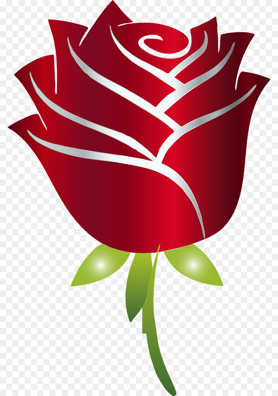 Rose, Design, Drawing, transparent png image & clipart free download.