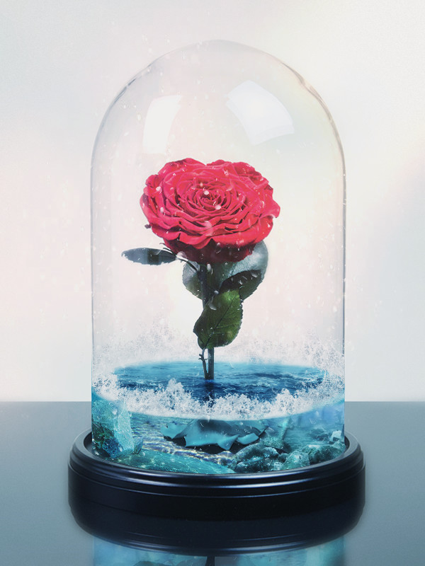 beauty and the beast rose.png.