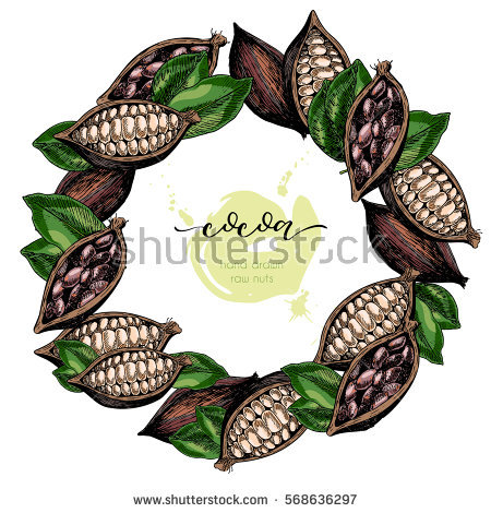Cacao Bean Stock Photos, Royalty.