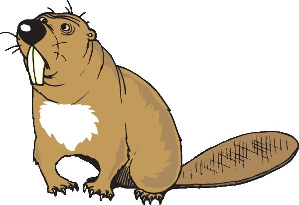 Beaver Logo Clipart.
