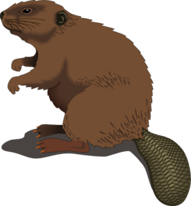 Beaver Dam Clipart.
