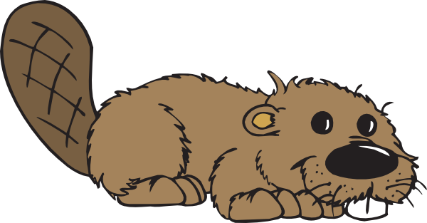 Free beaver clipart images.