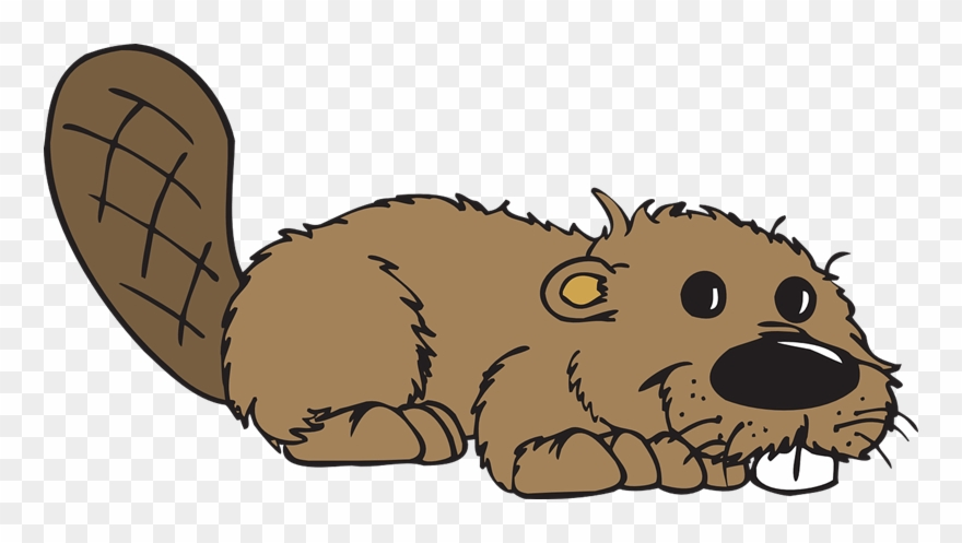 Beaver Clipart Free.