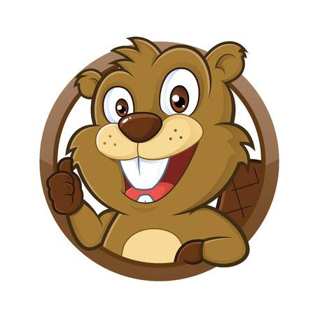 5,577 Beaver Stock Illustrations, Cliparts And Royalty Free Beaver.