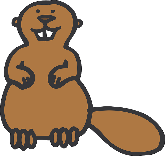 Free pictures BEAVER.