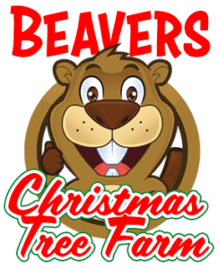 Beavers Christmas Tree Farm.
