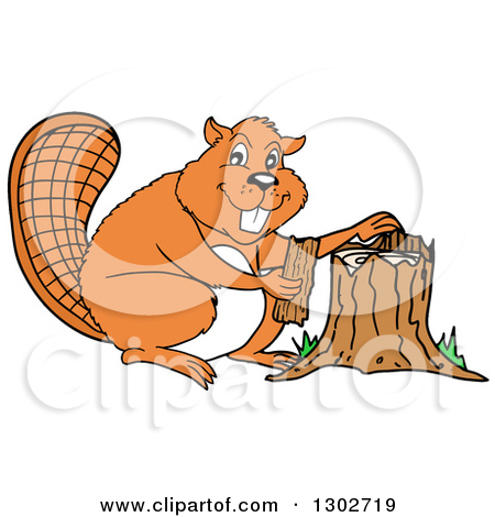 Clipart of a Cartoon Beaver Chef in an Apron, Giving a Thumb up.