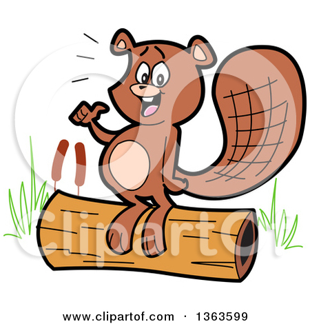 Clipart of a Cartoon Pleased Beaver Eating a Chunk After Chopping.