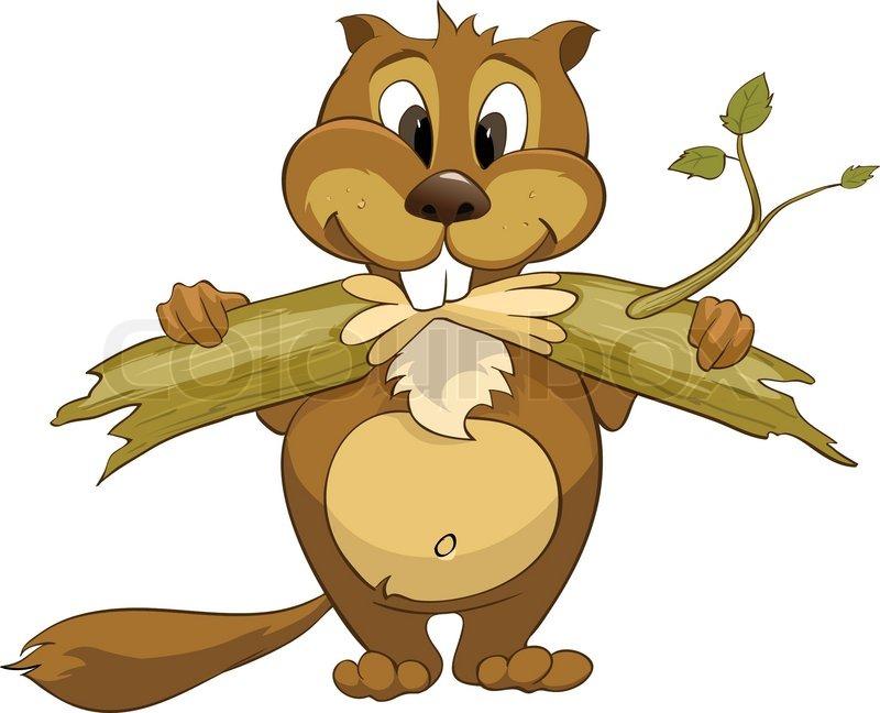 Buy Stock Photos of Beaver.
