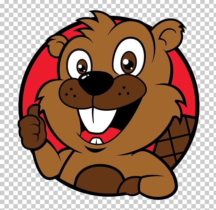 Beaver clipart head, Beaver head Transparent FREE for.