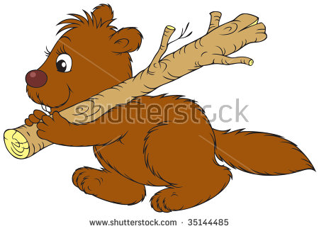 Beaver Holding Piece Wood Protection Forests Stock Vector.