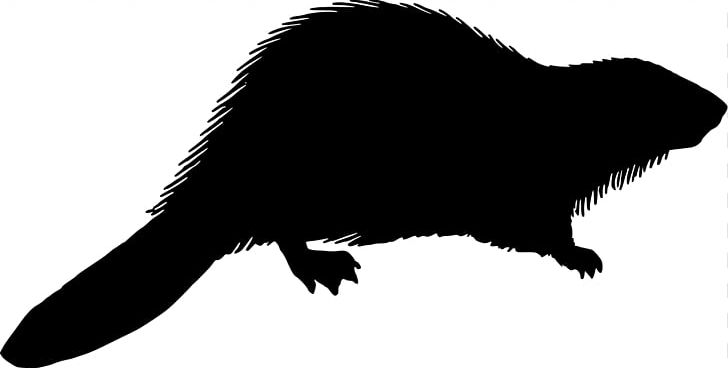Beaver Silhouette PNG, Clipart, Animal, Beak, Beaver, Black And.