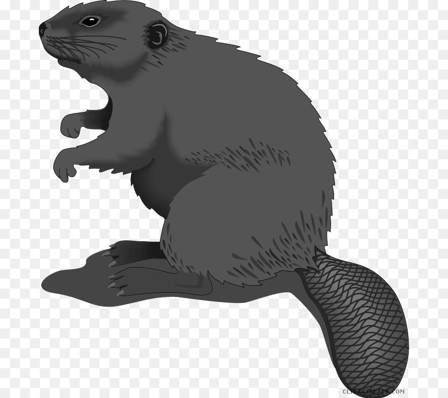 Beaver Cartoon clipart.
