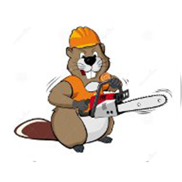 Angry Beaver Tree Services.