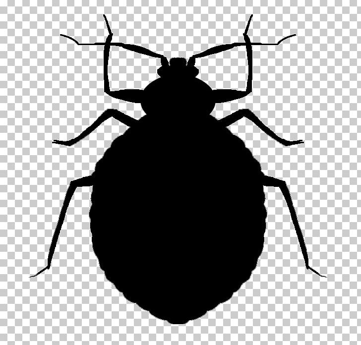 Mosquito Insect Bed Bug Bite Pest Control PNG, Clipart, Arthropod.