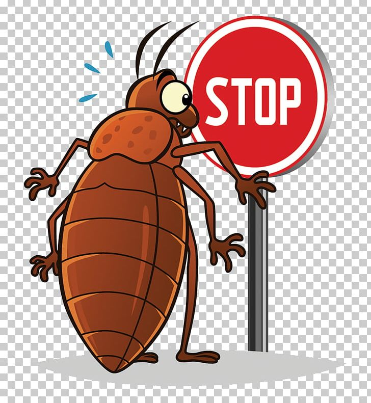 Insect Bed Bug PNG, Clipart, Animals, Arthropod, Bed Bug Bite.