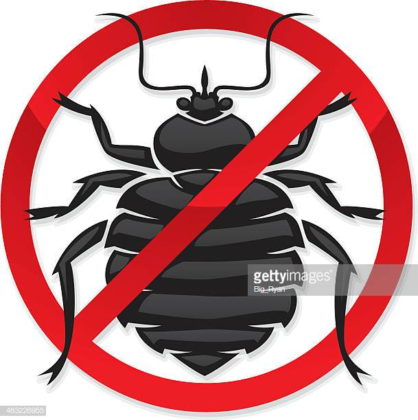 60 Top Bedbug Stock Illustrations, Clip art, Cartoons, & Icons.