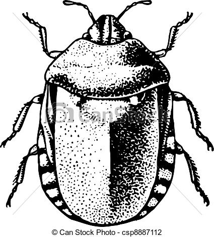 Bedbug Illustrations and Clip Art. 730 Bedbug royalty free.