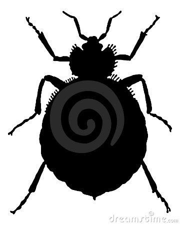 Bedbug Stock Illustrations.