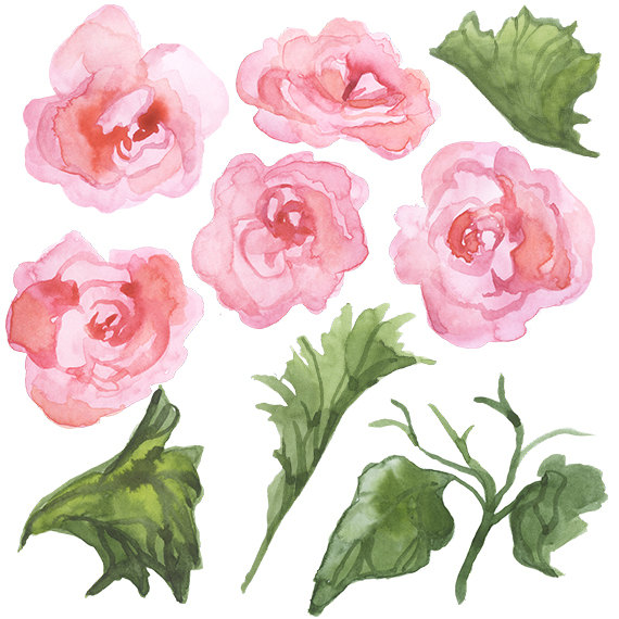Watercolor Begonias Clip Art Spring by DigitalPressCreation.