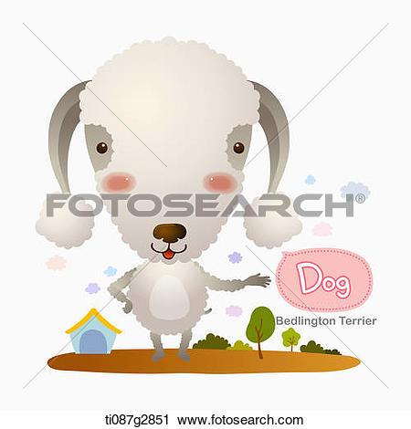 Clipart of illustration of Bedlington Terrier ti087g2851.
