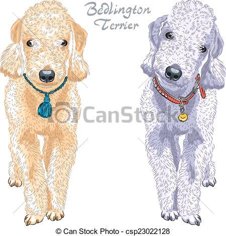 Bedlington terrier Vector Clip Art Royalty Free. 31 Bedlington.