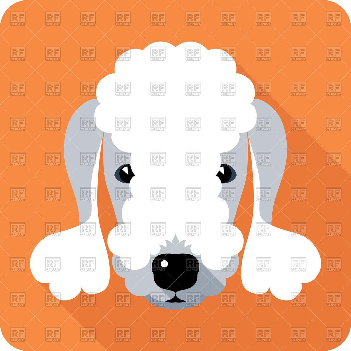 Dog Bedlington Terrier.