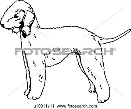Clipart of , animal, bedlington terrier, breeds, canine, dog, show.
