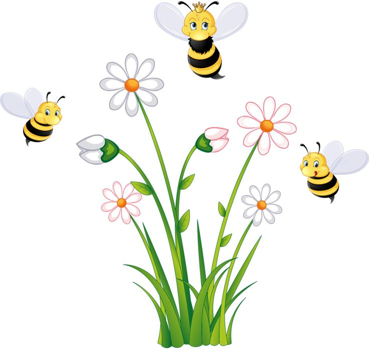 Bee And Flower Clipart.
