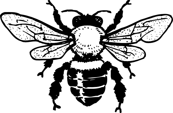 Honey Bee clip art Free vector in Open office drawing svg.