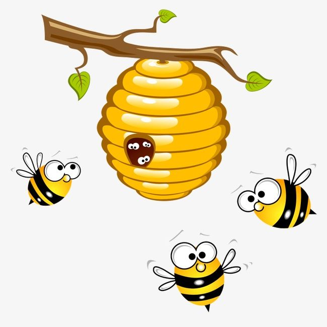 Bee, Bee Clipart, Honey, Yellow PNG Transparent Clipart.