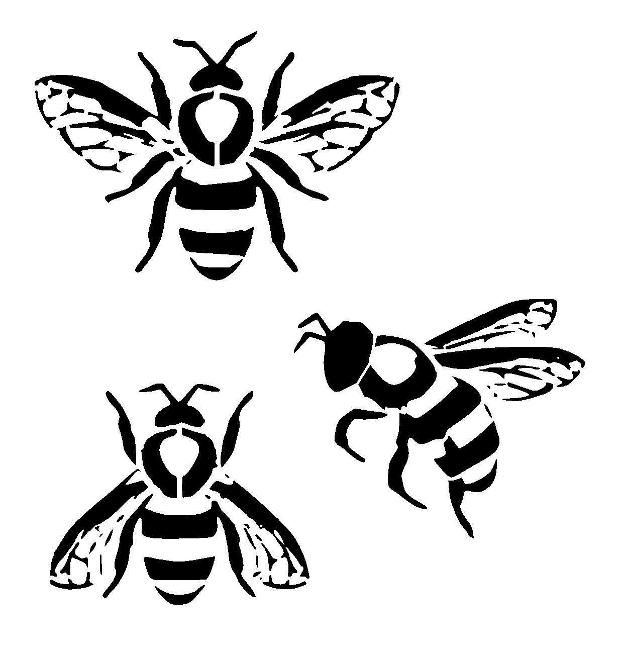 Realistic Bee Drawings Clip Art Black And White Designs Free Easy.