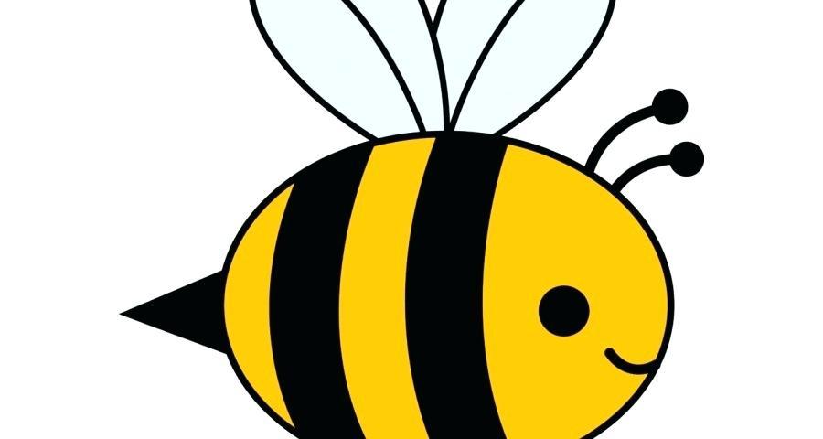 Honey Bee Cartoon Drawing.