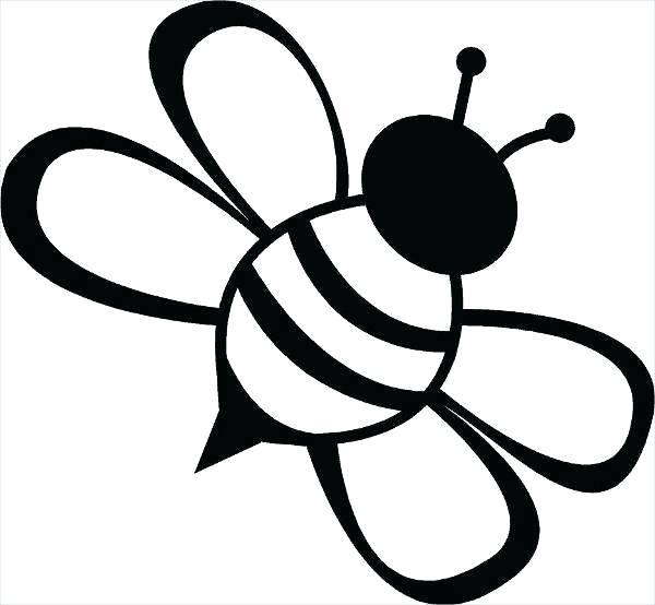Vintage Bee Drawing.