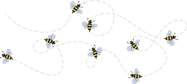 Best Flying Bee Illustrations, Royalty.