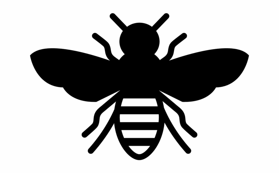 Transparent Bee Icon, Transparent Png Download For Free #477771.