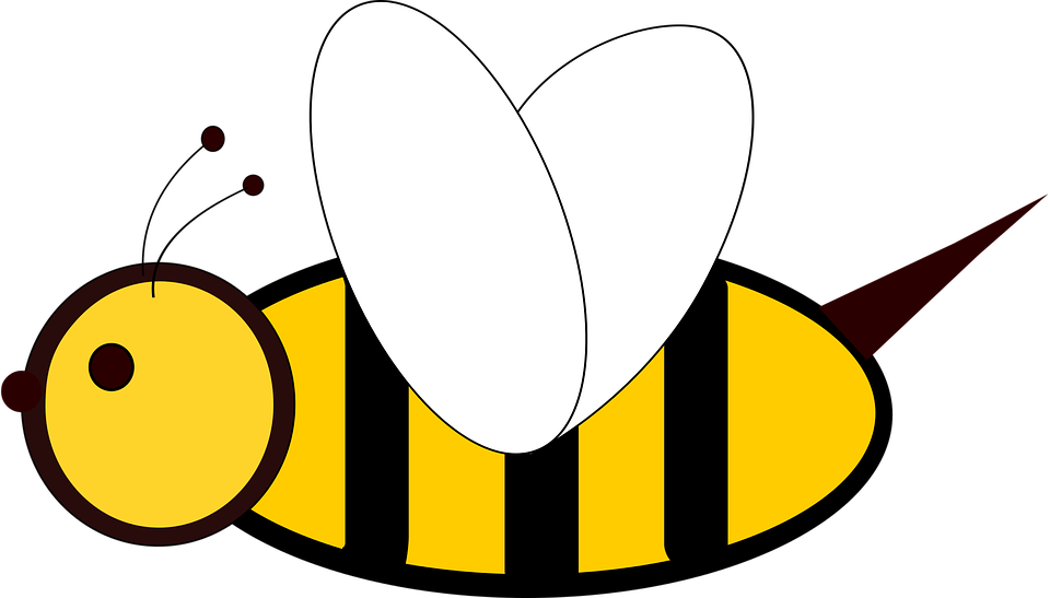 Free vector graphic: Bee, Insect, 2D.