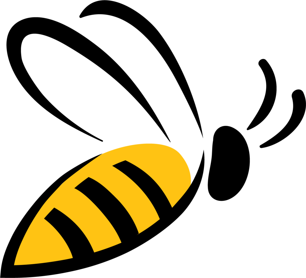 Bee PNG image, free bee picture PNG download.