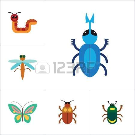 0 Bee Mite Stock Vector Illustration And Royalty Free Bee Mite Clipart.