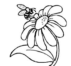 Bee And Flower Drawing.