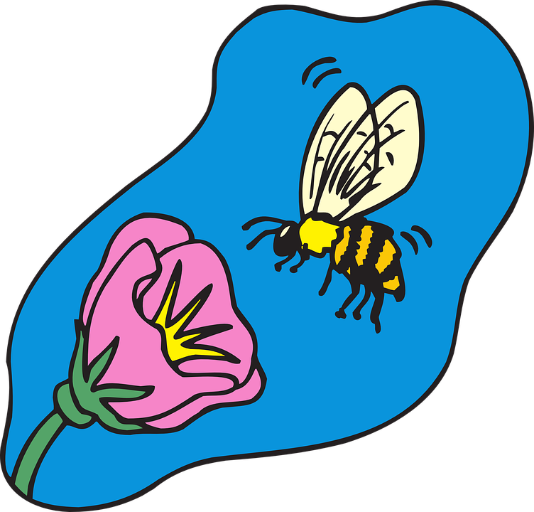 Free vector graphic: Bee, Flying, Flower, Insect, Pollen.