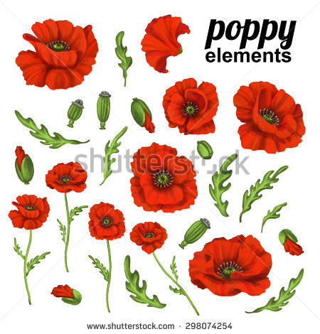 Poppy Stock Images, Royalty.