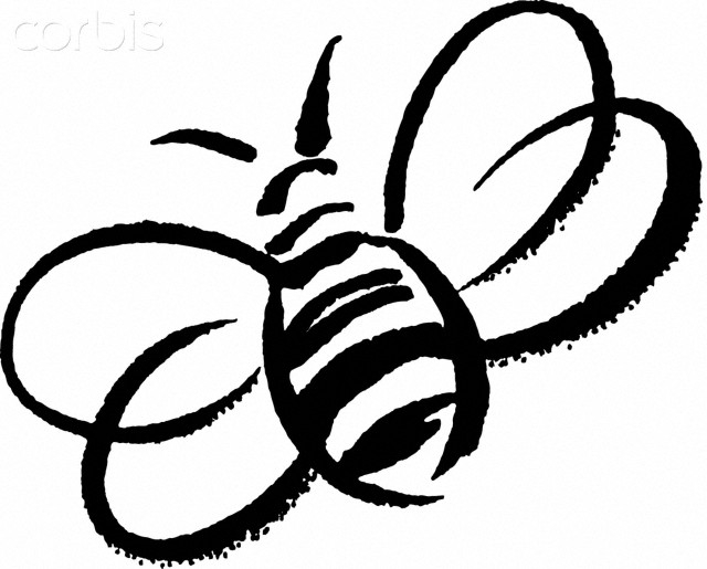 bee outline clipart - Clipground