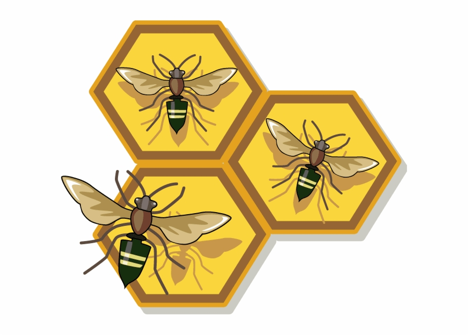 Honey Bee Free Clip Art , Png Download.