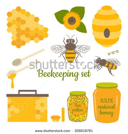 Honey Vector Set Bee Honeycomb Hive Stock Vector 309018761.