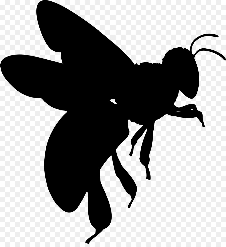 Butterfly Black And White clipart.