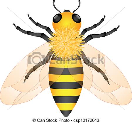 Bee sting Vector Clipart EPS Images. 1,906 Bee sting clip art.